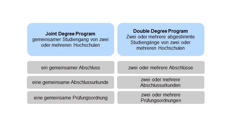 joint-double-programs.png